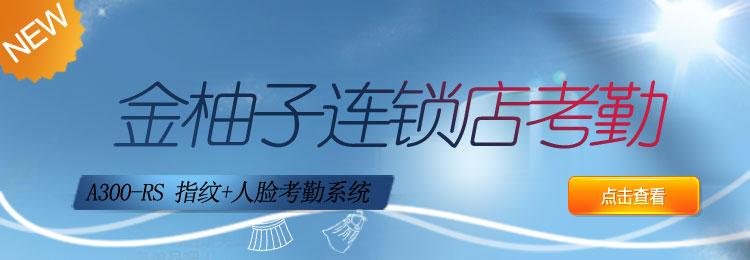 互联网考勤系统A300连锁店系列